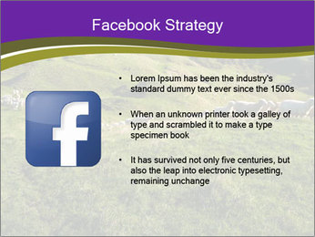 Sheep running PowerPoint Template - Slide 6