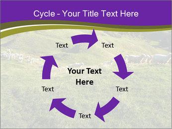 Sheep running PowerPoint Template - Slide 62