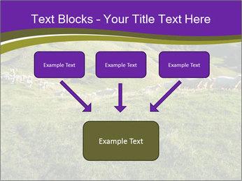 Sheep running PowerPoint Template - Slide 70