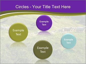 Sheep running PowerPoint Template - Slide 77