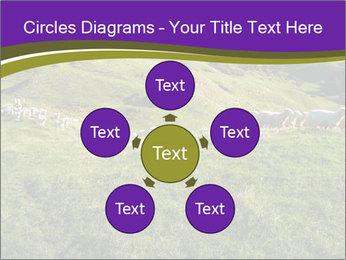 Sheep running PowerPoint Template - Slide 78