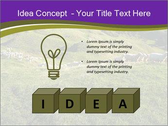 Sheep running PowerPoint Template - Slide 80