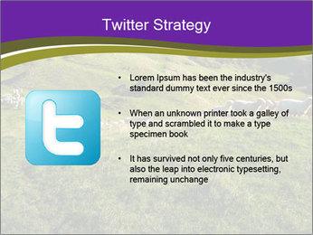 Sheep running PowerPoint Template - Slide 9
