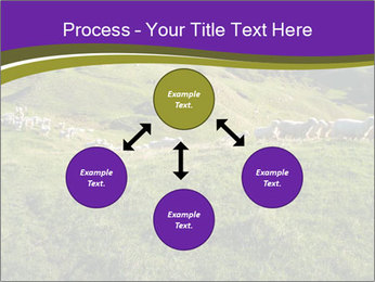 Sheep running PowerPoint Template - Slide 91