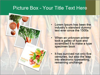 Fresh carrots PowerPoint Template - Slide 17