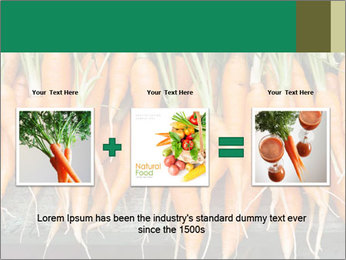Fresh carrots PowerPoint Template - Slide 22