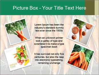 Fresh carrots PowerPoint Template - Slide 24