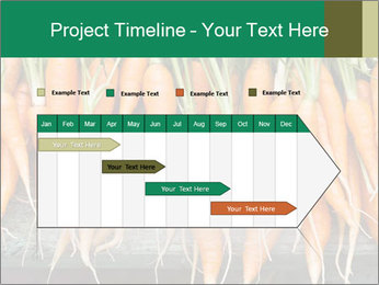 Fresh carrots PowerPoint Template - Slide 25