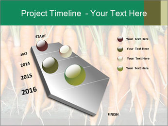 Fresh carrots PowerPoint Template - Slide 26