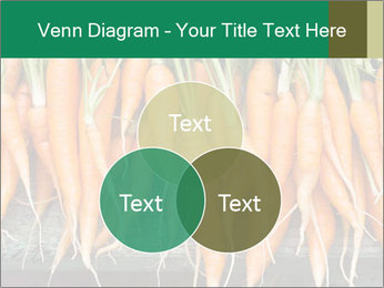 Fresh carrots PowerPoint Template - Slide 33