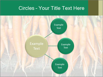 Fresh carrots PowerPoint Template - Slide 79