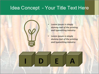 Fresh carrots PowerPoint Template - Slide 80