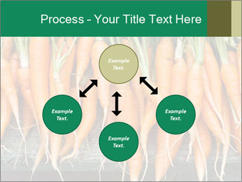 Fresh carrots PowerPoint Template - Slide 91