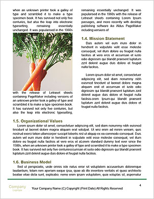 0000092178 Word Template - Page 4