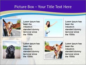 Golden Retriever PowerPoint Templates - Slide 14