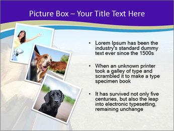 Golden Retriever PowerPoint Templates - Slide 17