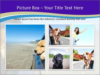 Golden Retriever PowerPoint Template - Slide 19
