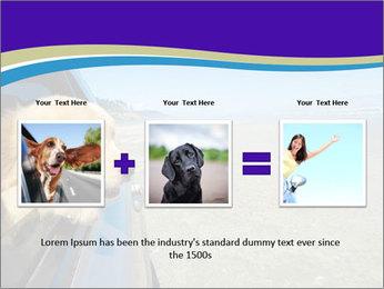 Golden Retriever PowerPoint Templates - Slide 22