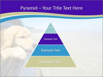 Golden Retriever PowerPoint Templates - Slide 30