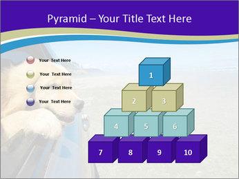 Golden Retriever PowerPoint Templates - Slide 31
