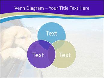 Golden Retriever PowerPoint Templates - Slide 33