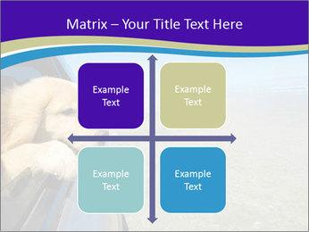 Golden Retriever PowerPoint Templates - Slide 37