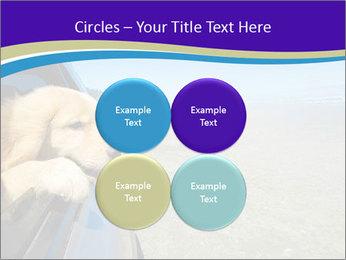 Golden Retriever PowerPoint Templates - Slide 38