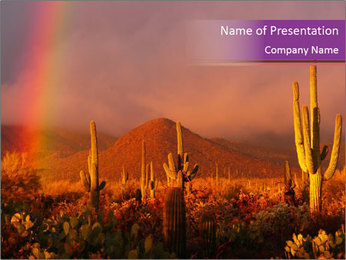 Rainbow sunset PowerPoint Template - Slide 1