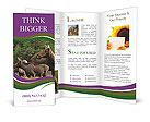 0000092196 Brochure Templates