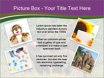 Moose Cow PowerPoint Template - Slide 24