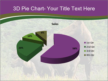 Moose Cow PowerPoint Template - Slide 35
