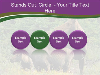 Moose Cow PowerPoint Template - Slide 76