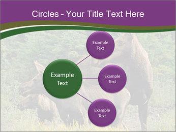Moose Cow PowerPoint Template - Slide 79