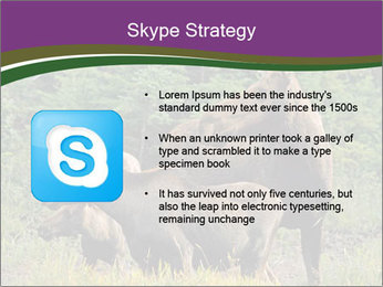 Moose Cow PowerPoint Template - Slide 8