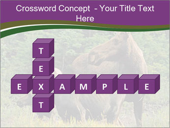 Moose Cow PowerPoint Template - Slide 82