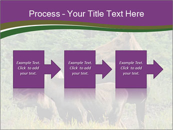Moose Cow PowerPoint Template - Slide 88