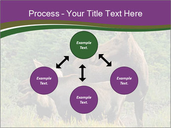Moose Cow PowerPoint Template - Slide 91