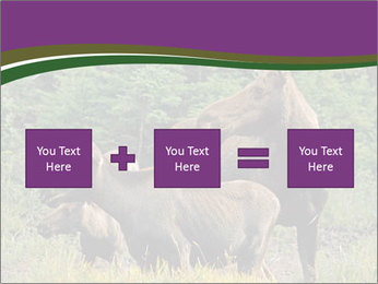 Moose Cow PowerPoint Template - Slide 95