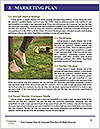 0000092206 Word Templates - Page 8