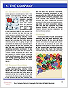 0000092208 Word Template - Page 3