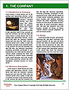 0000092210 Word Template - Page 3