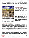 0000092210 Word Template - Page 4
