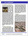 0000092214 Word Template - Page 3