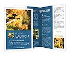 0000092234 Brochure Template