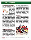 0000092238 Word Templates - Page 3