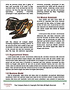 0000092238 Word Templates - Page 4