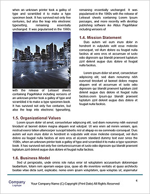 0000092239 Word Template - Page 4