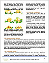 0000092240 Word Template - Page 4
