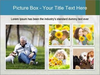 Jack russel terrier PowerPoint Template - Slide 19