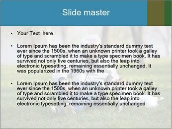 Jack russel terrier PowerPoint Template - Slide 2
